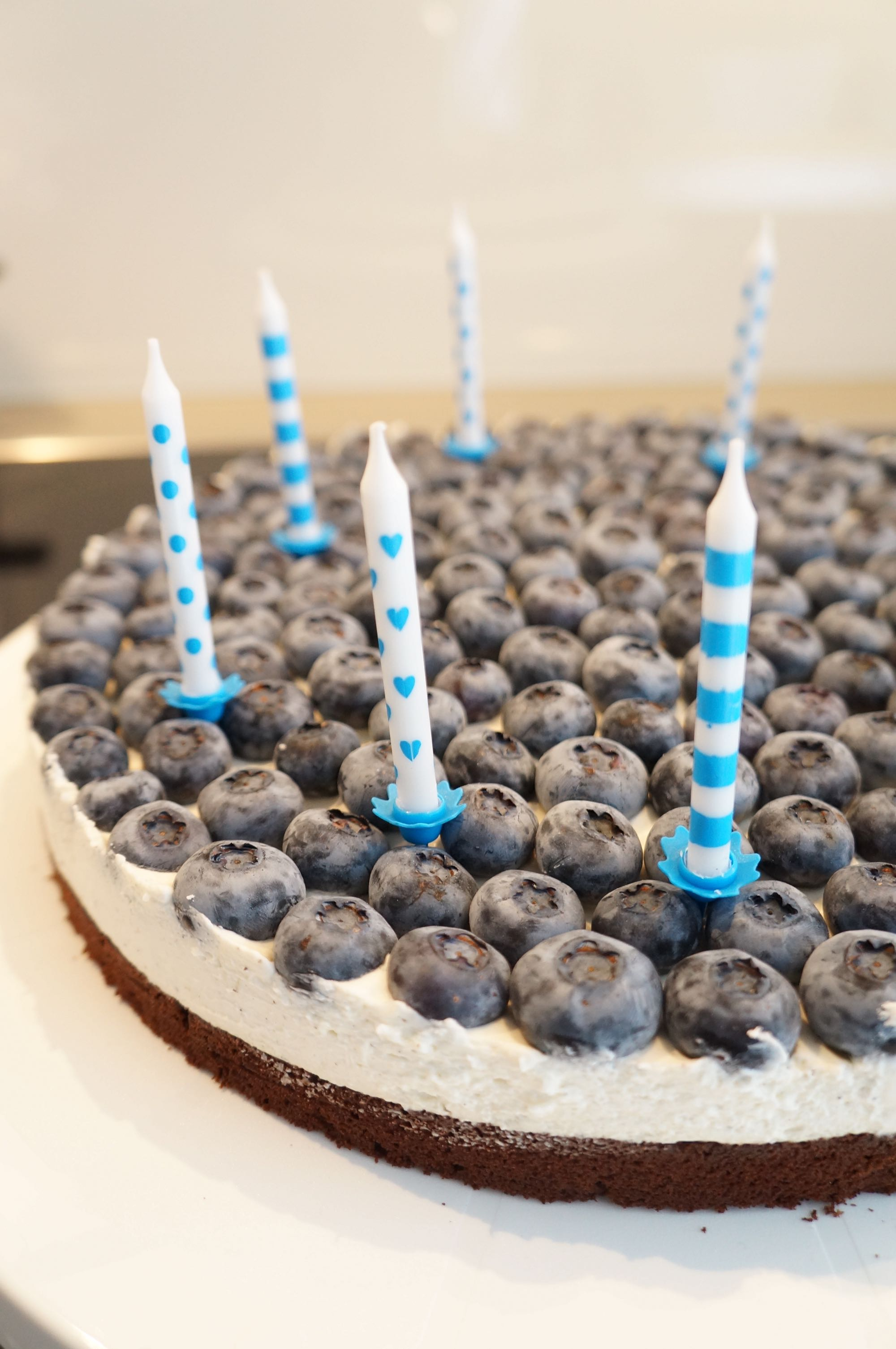 Schoko-Vanille Blaubeerkuchen