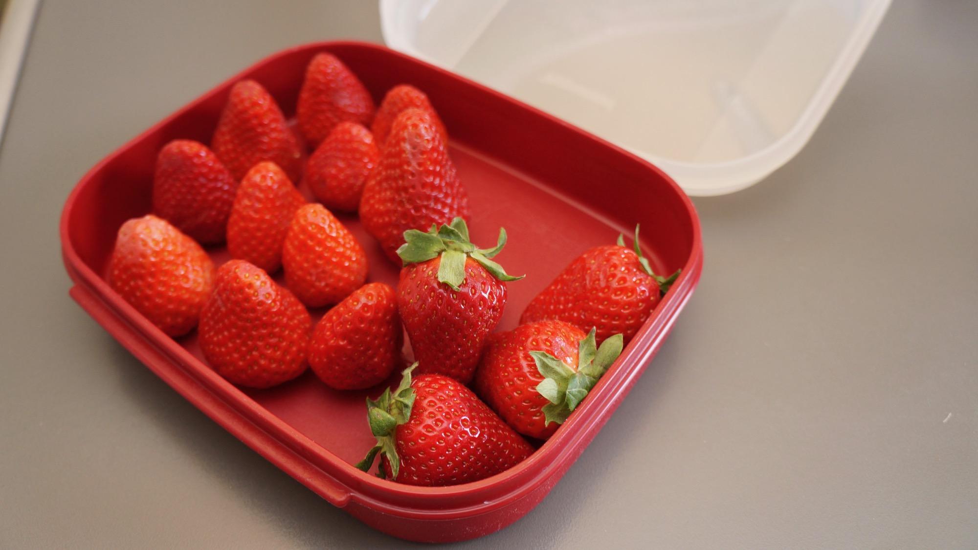 Erdbeeren aufbewahren